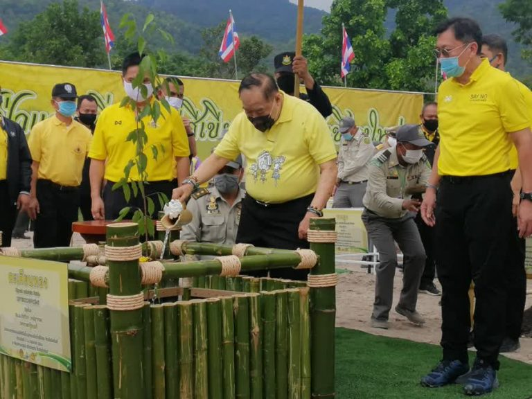 Deputy PM Prawit proceeds with forest restoration project in Chiang Mai